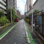2017・7・18 眠る前に思うこと-引き続き猛暑列島、東京に降った雹-